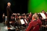 Bekijk het album 2015 Schouwburgconcert Going South